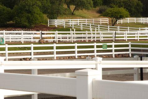 ranch-10003