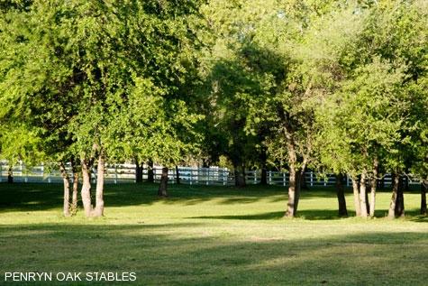 ranch-20028